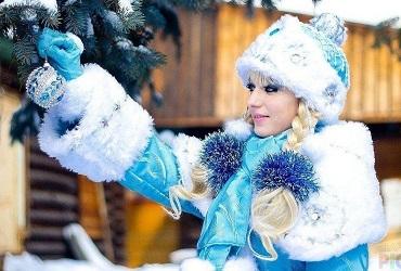 Кострома, в гости к Снегурочке